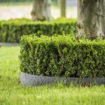 Ecolat_gebogen_Anwendung_Baum_grau_bera_bv_nl